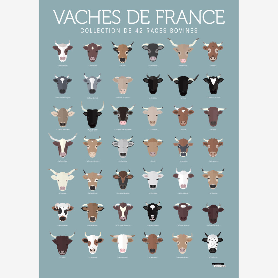 Vaches de France
