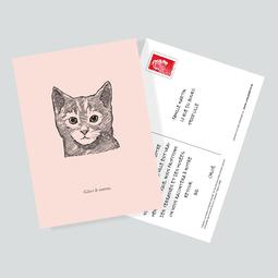 Etui 12 cartes postales - Les nuits d'une demoiselle